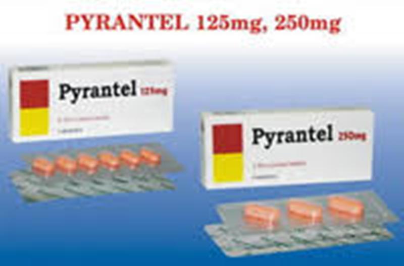 Viên uống tẩy giun Pyrantel