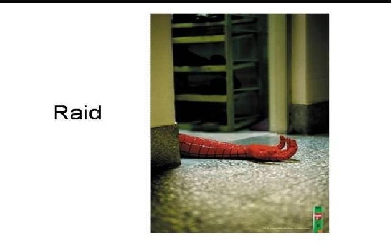 Thuốc xịt côn trùng Raid - không chừa cả người nhện