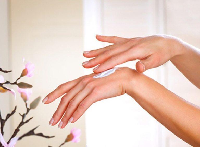 Top 10 thương hiệu kem dưỡng da tay được ưa chuộng nhất hiện nay -  Toplist.vn