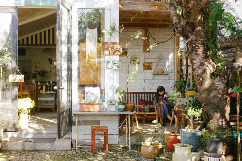 Tiệm cà phê Hoa Hồng