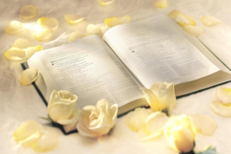 Top 15 tiểu thuyết tình yêu hay nhất thế giới