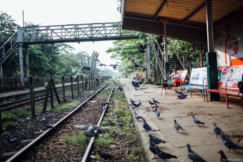 Tìm bình yên nơi đất Phật ở Yangon