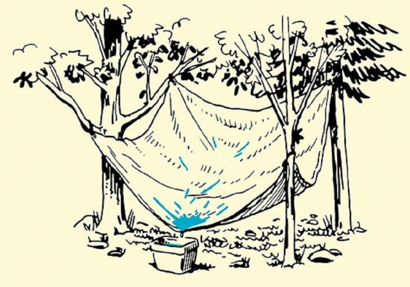 Tìm kiếm nguồn nước
