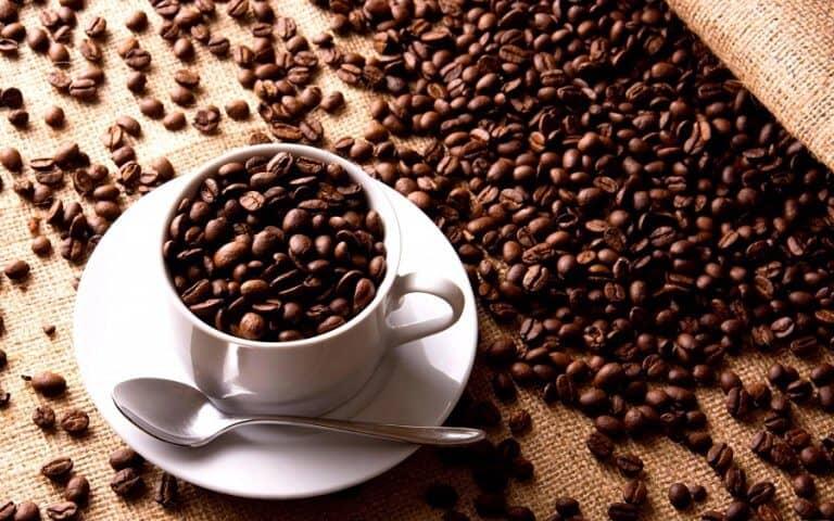 Tìm nhà cung ứng nguyên liệu mở quán cafe