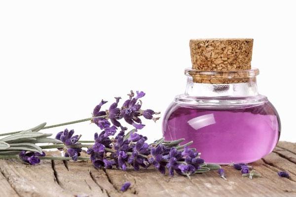 Tinh dầu oải hương nguyên chất chữa đau đầu ở phụ nữ