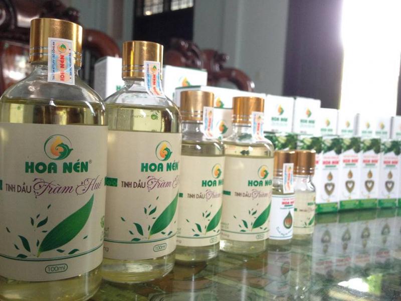 Tinh dầu tràm Huế nguyên chất - Hoa Nén