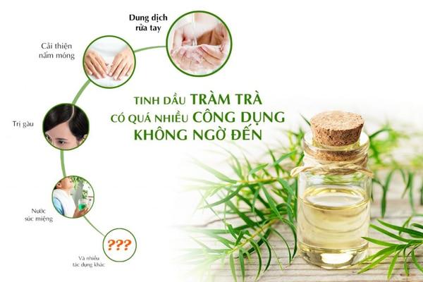 Tinh dầu Tràm Trà có nhiều công dụng với sức khỏe