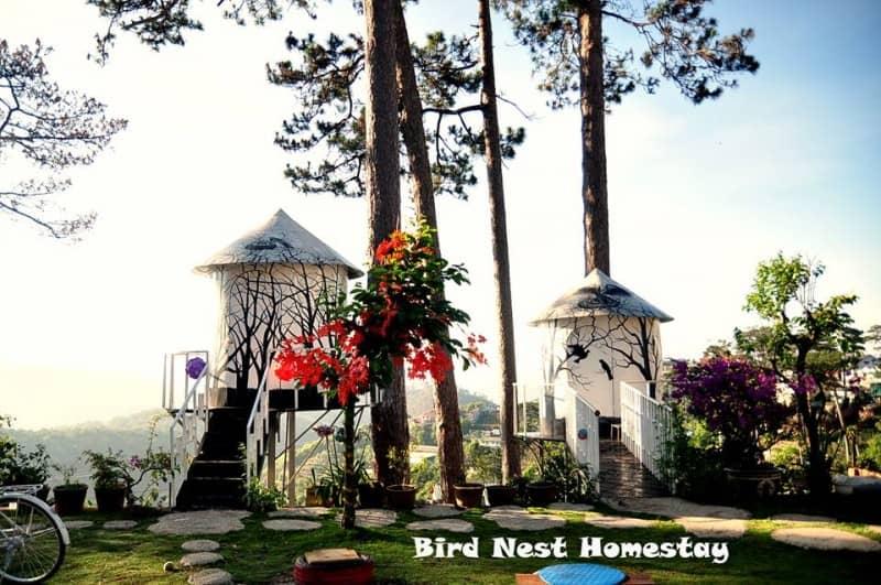 Tổ Chim Homestay rất đặc biệt, được sơn màu trắng, trang trí bởi những con chim rất dễ thương, bên trong được trang bị nội thất tiện nghi