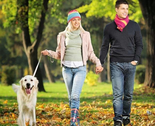 Khi đi dạo hãy nói chuyện với cô ấy