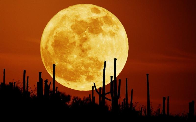 Thật sự do mặt trăng quá to mà chúng ta lại quá nhỏ nên mới có cảm giác ấy.