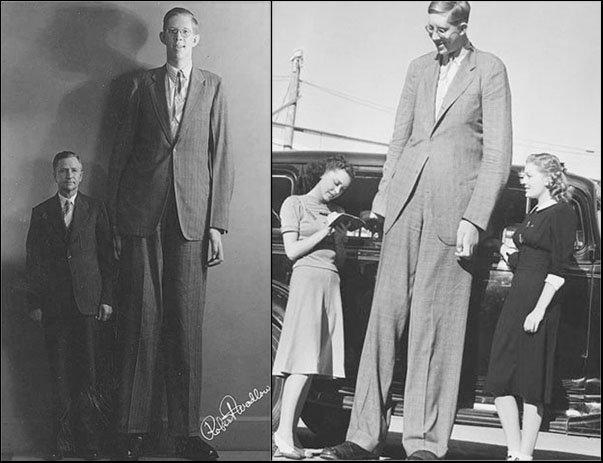 Robert Pershing Wadlow (22/2/1918 – 15/7/1940) Người đàn ông cao nhất mọi thời đại