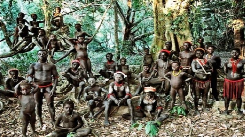 Hình ảnh bộ tộc Toromona