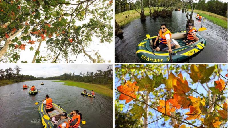 Chèo thuyền trên hồ Tuyền Lâm để vào khu rừng lá phong đang thay màu áo