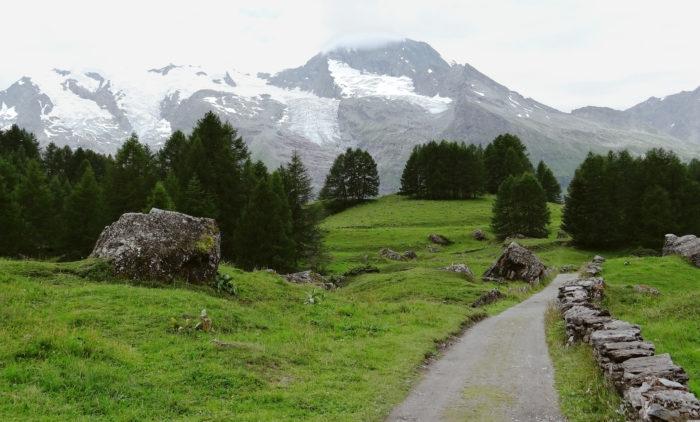 Đường mòn Tour du Mont Blanc