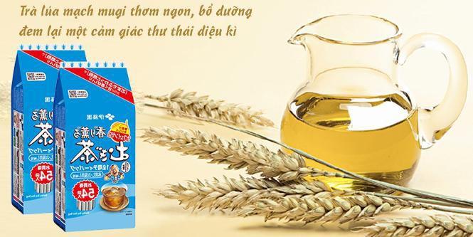 Trà Lúa Mạch Mugi Túi Lọc cực kì thơm ngon và bổ dưỡng