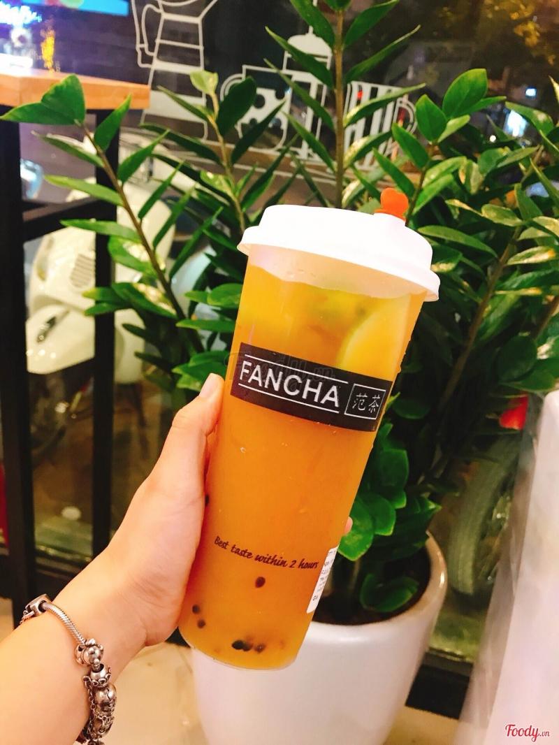 Trà trái cây Fancha Tea
