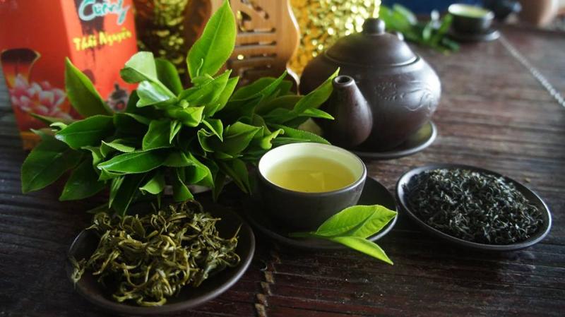 Việt cổ trà lộc đỉnh - trà đỉnh nõn Tân Cương, Thái Nguyên