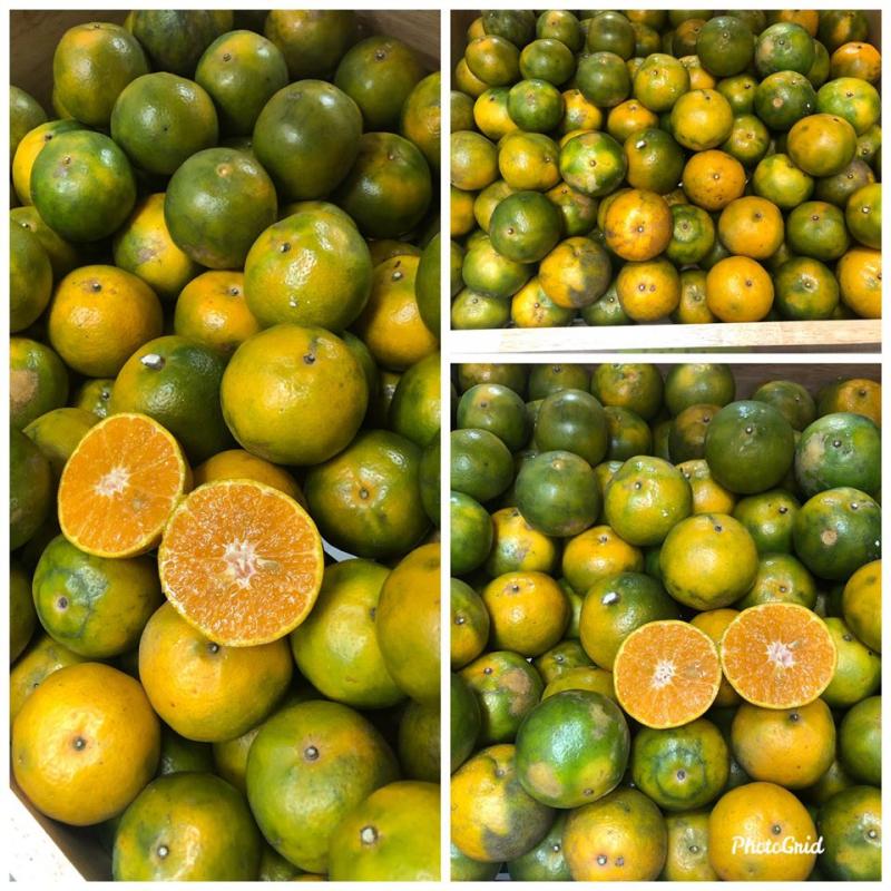 Trái Cây 3F Fruits