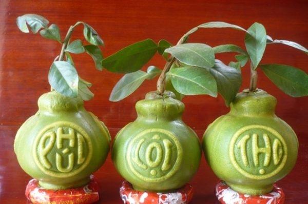 Trái cây lạ mang ý nghĩa cầu phúc