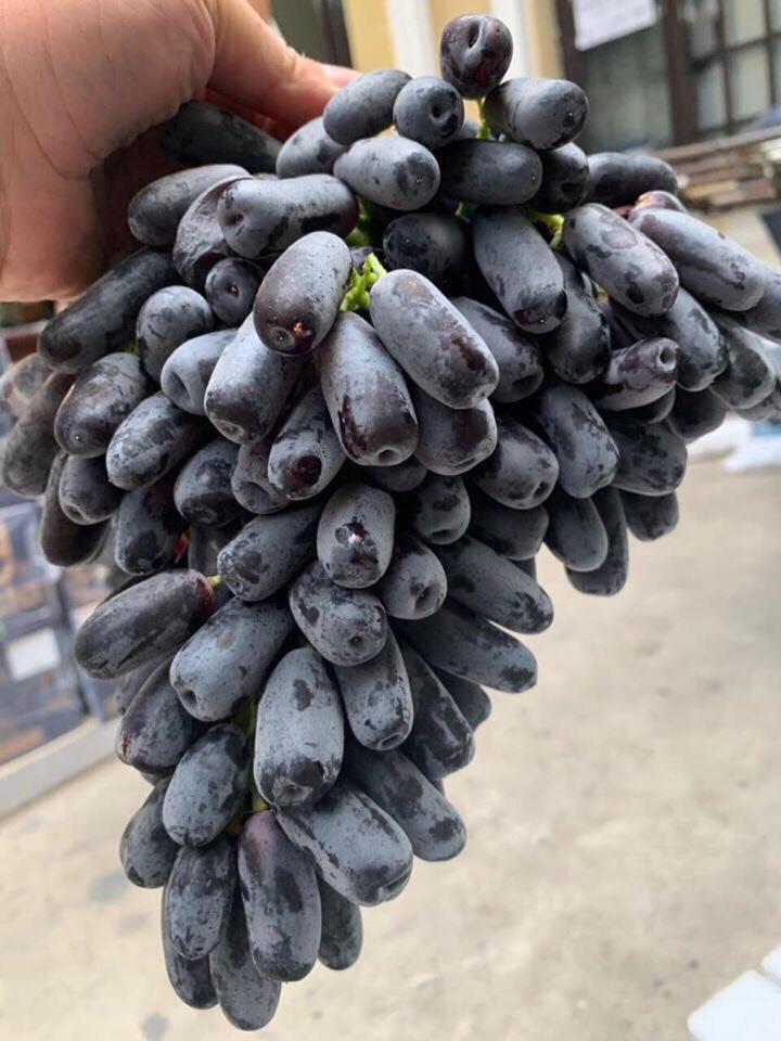 Trái cây nhập khẩu - Biên Hòa Fruits