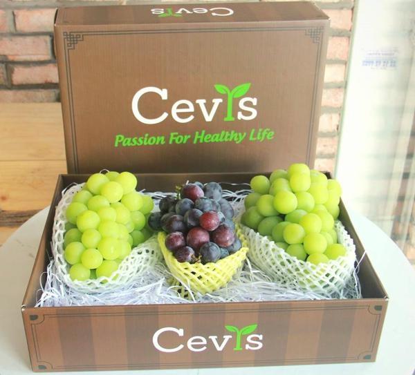 Trái cây nhập khẩu CEVIS