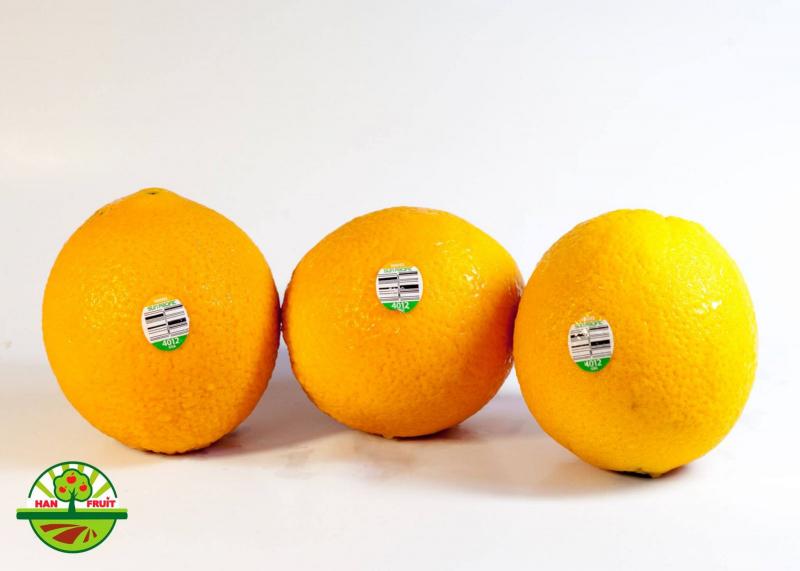 Trái cây nhập khẩu - Han Fruit