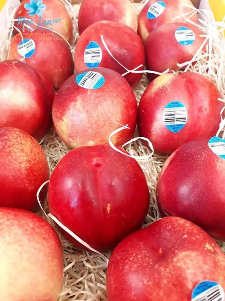 Top 7 Cửa hàng trái cây sạch và an toàn tại Cần Thơ