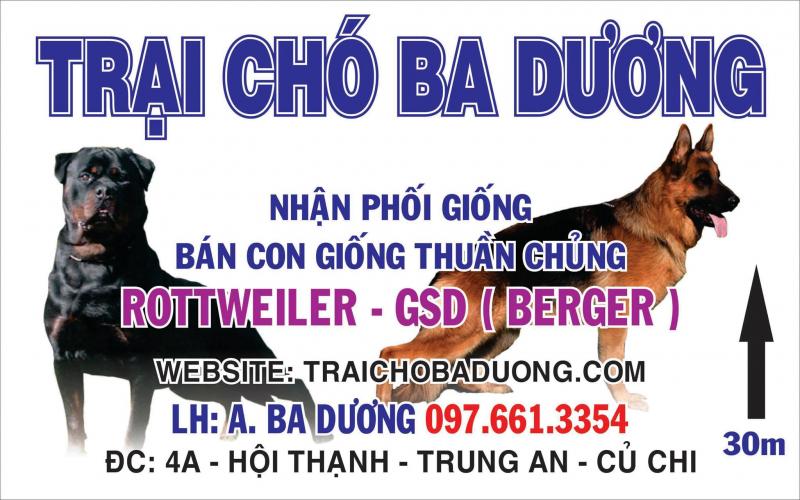 Trại chó Ba Dương