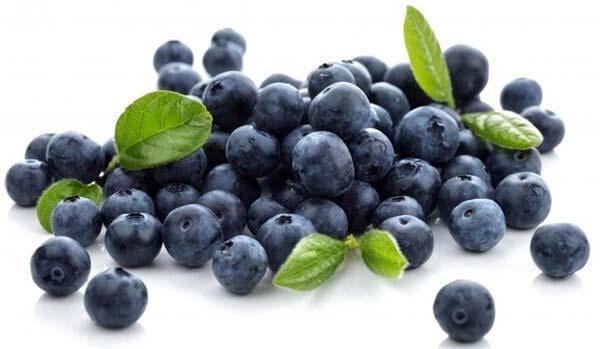 Trái việt quất giúp giảm cân hiệu quả