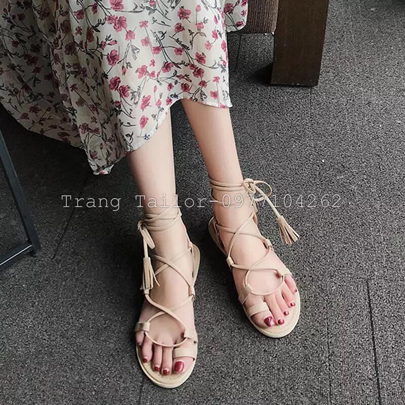 Trang Tailor-SHOP. Socks & SHOE