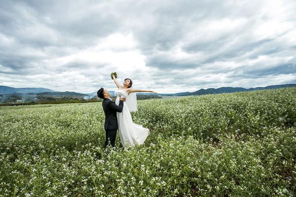 Ảnh cưới tại Đà Lạt Milk Farm
