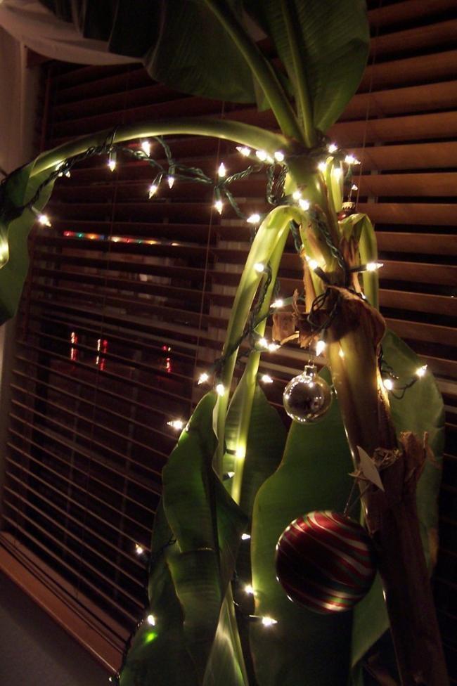Trang trí cây chuối Noel