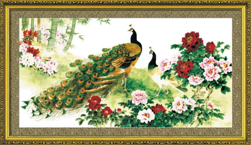 Vợ chồng chim Công