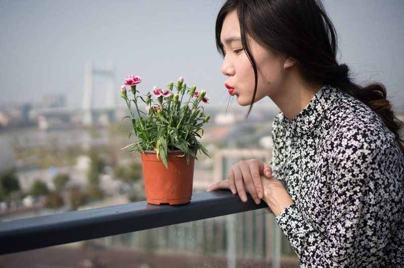 Tránh xa phấn hoa, nơi ẩm mốc để không bị dị ứng.
