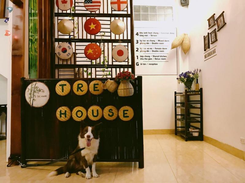 TreHouse Homestay