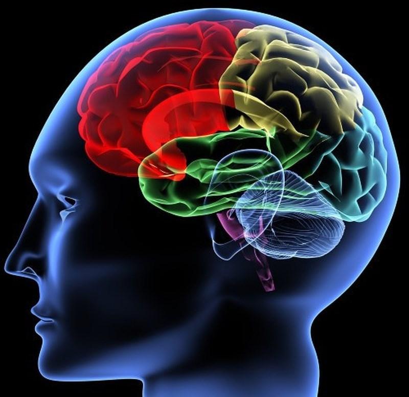 Suy giảm trí nhớ