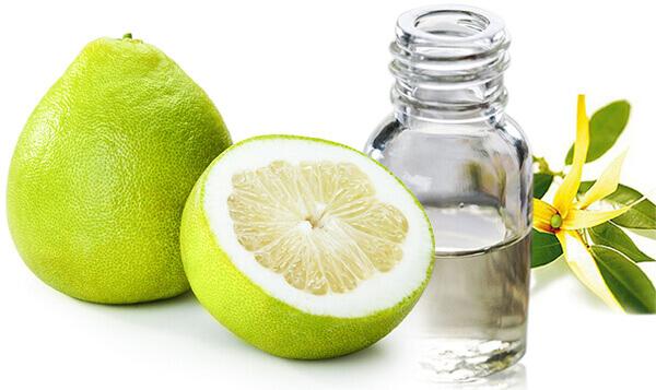 Sử dụng tinh dầu bưởi làm dầu gội chống rụng tóc