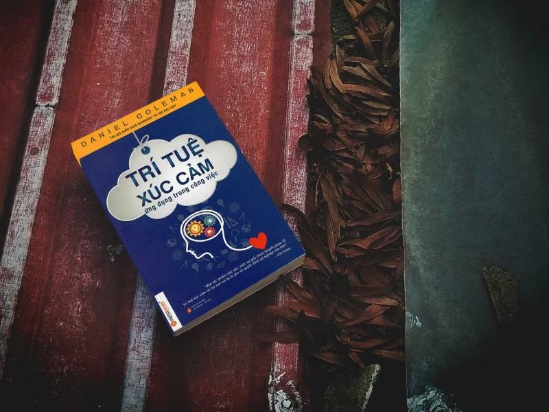 Cuốn sách Trí tuệ cảm xúc-Ứng dụng trong công viêc