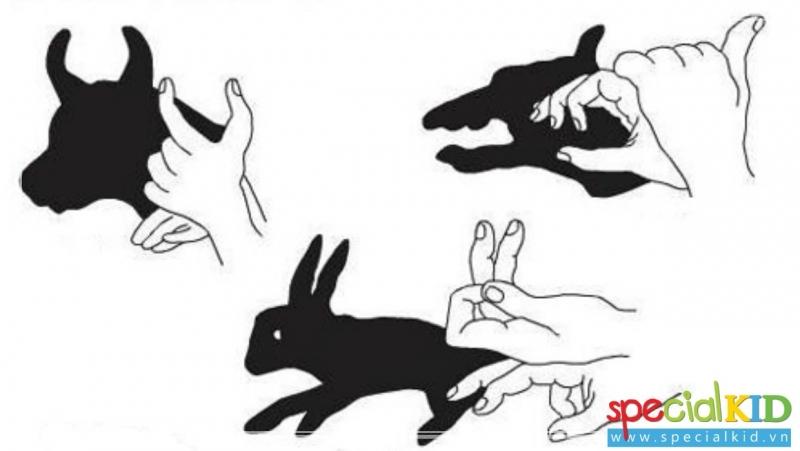 Tạo hình con vật từ đôi tay