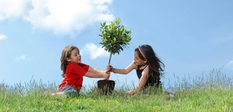 Trồng cây giúp bé bớt căng thẳng, biết yêu thiên nhiên và tìm được niềm vui trong lao động