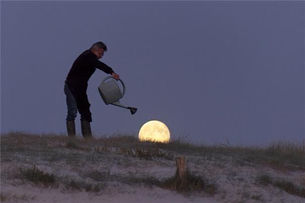 Chăm sóc trăng- Nguồn: Internet