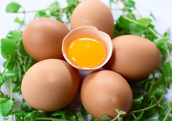 Trứng là một nguồn cung cấp protein dồi dào nên có chức năng phục hồi, cải thiện các tế bào và các mô bị hư hỏng.