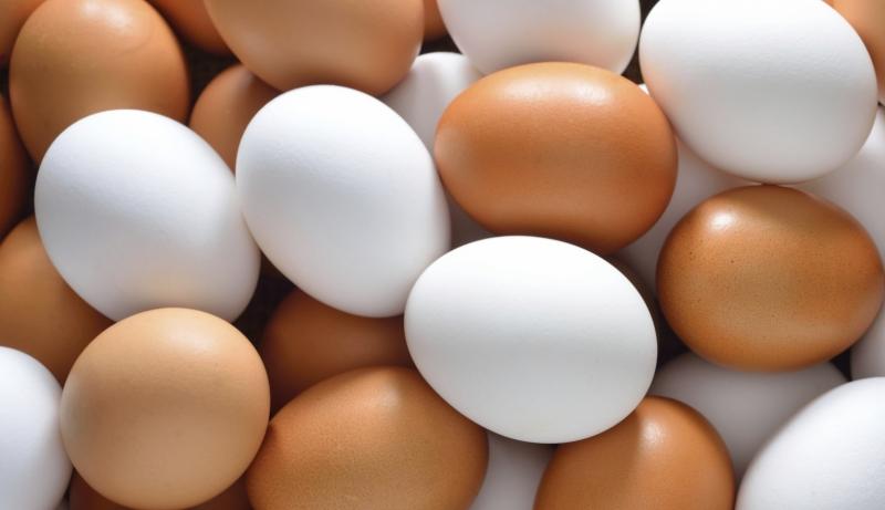 Trứng rất tốt cho sức khỏe