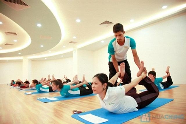Trung tâm Bliss yoga với toàn bộ giáo viên là người Ấn Độ, mang lại cho bạn những bài yoga hữu ích và chuyên nghiệp
