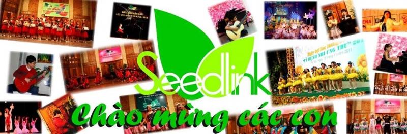 Seedlink thường xuyên mở lớp học mới