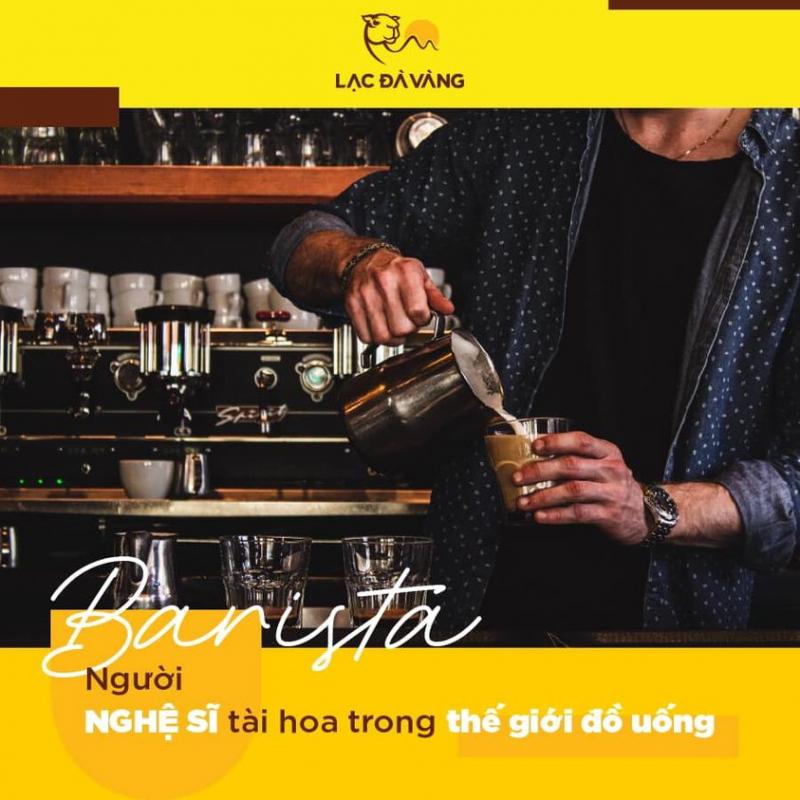 khoá học nghề Barista chỉ tập trung vào cà phê, chủ yếu là cà phê máy Italia và các phương pháp pha cà phê khác nhau trên thế giới.