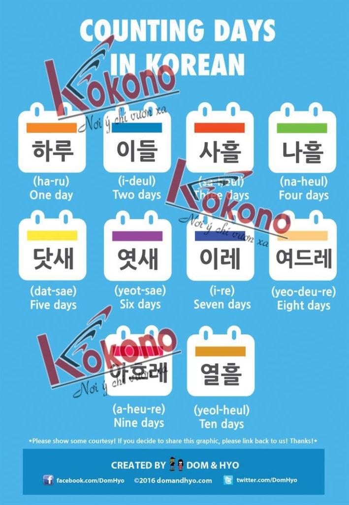 Trung tâm Hàn ngữ KoKoNo