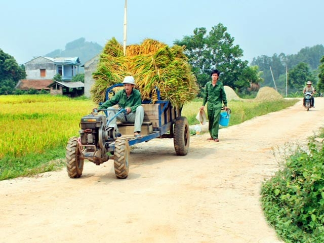 Trung tâm Khuyến nông Quốc gia: http://www.khuyennongvn.gov.vn