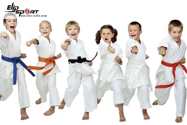 Karate là môn võ được đào tạo tại Trung tâm TDTT Thủ Đức