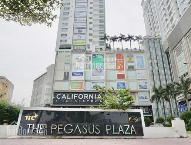 The Pegasus Plaza